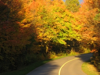 fall colors in the Gatineau Park