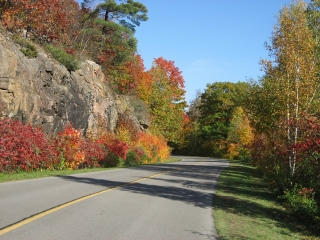 fall colors in Gatineau Park