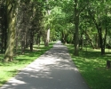 path in the City of Welland