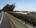 view of the  Gulf of Mexico from the main road on Anna Maria Island