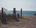 Bicycles on beach on Anna Maria Island.