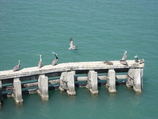 view when crossing the bridge to Anna Maria Island
