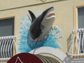 3d shark sign on Anna Maria Island