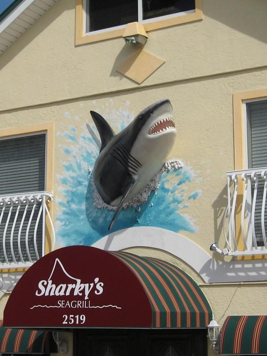3d shark sign on Anna Maria Island
