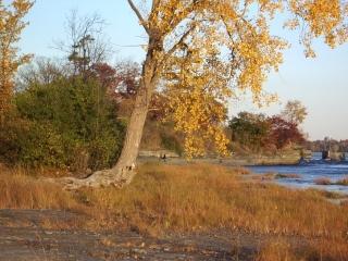 view along the Ottawa River