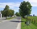 Experimental Farm road