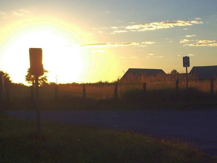 sunset in the Experimental Farm