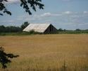 farm field next to the Ottawa-Carleton Trailway