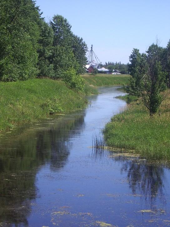 view from the Ottawa-Carleton Trailway