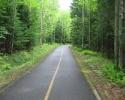 Estriade bike trail in a wooded area.