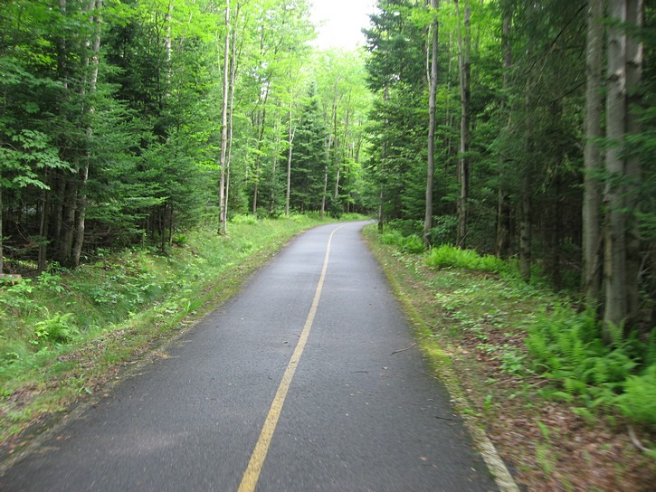 Estriade bike trail in a wooded area.