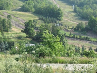 ski slope on the Blue Mountain in the summer