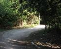 The Georgian Trail