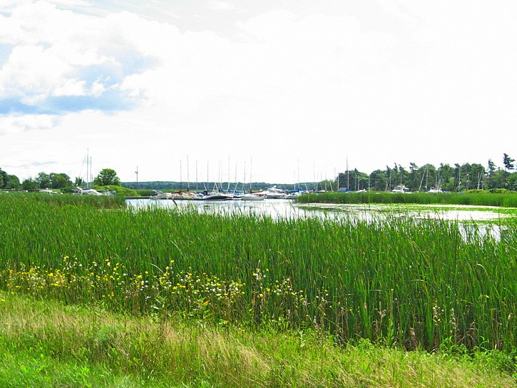 waterfront from Highway 2 between Gananogue and Kingston