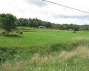 framland between Gananoque and Kingston
