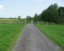 path into the Lemoine Point Conservation Area