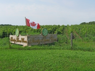 winery on Highway 33