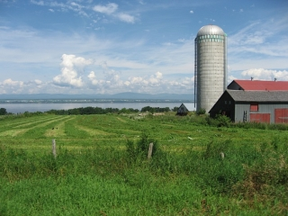 farm next to  St. Lawrence River
