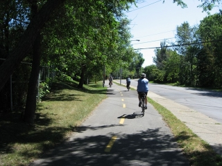 bike path on the South Shore.