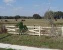 farmland next to Fruitville Road