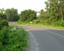 typical quiet road in Prince Edward County.