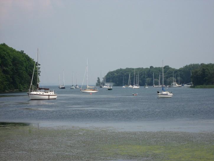 Prinyers Cove