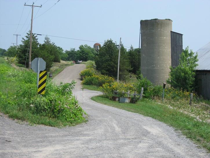 scene in Prince Edward County