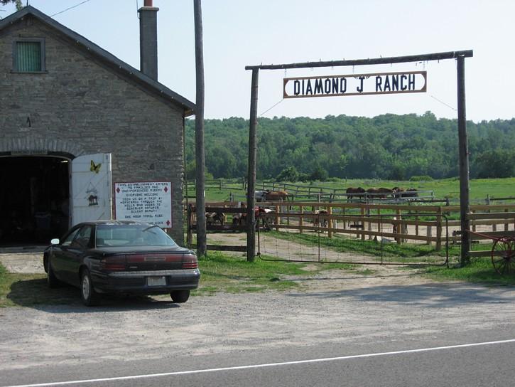 A horse ranch