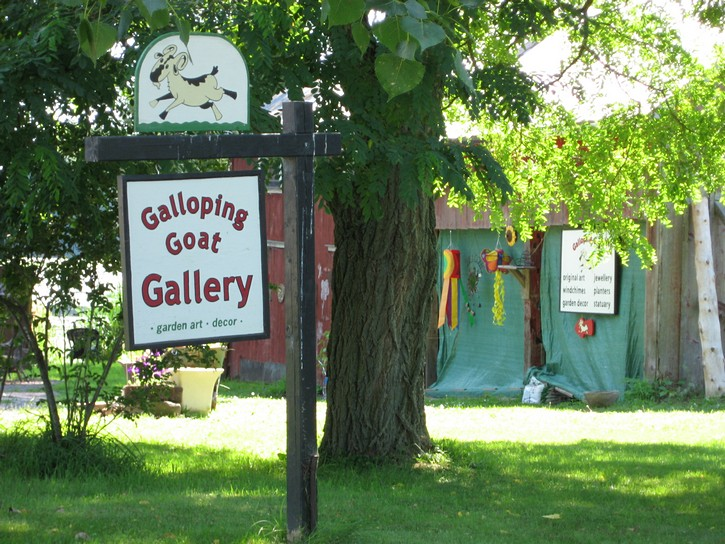 sign for Galloping Goat Gallery