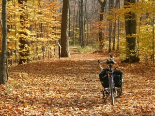 The Greenbelt Trail in the fall.