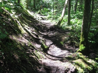hiking trail in the Kakabeka Falls Provincial Park
