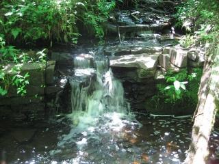 creeek and small water fall