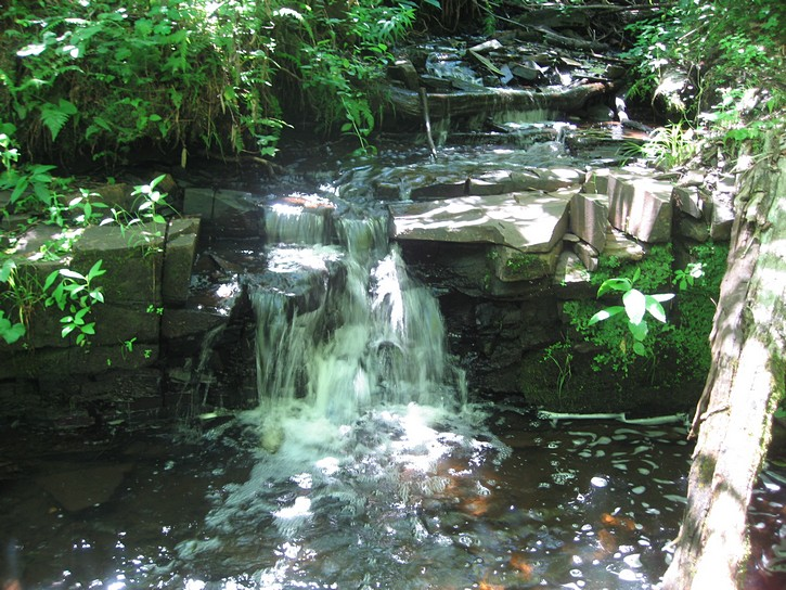 creeek and small water fall