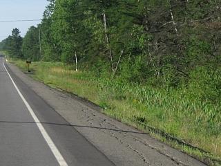 shoulder on Highway 61