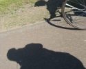 shadows of cyclist on Highway 61