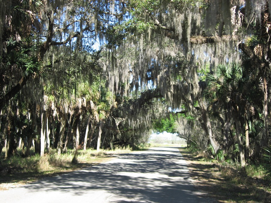 notes on going cycling in florida gobiking ca