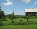 Barn with wind turbines on Wolfe Island